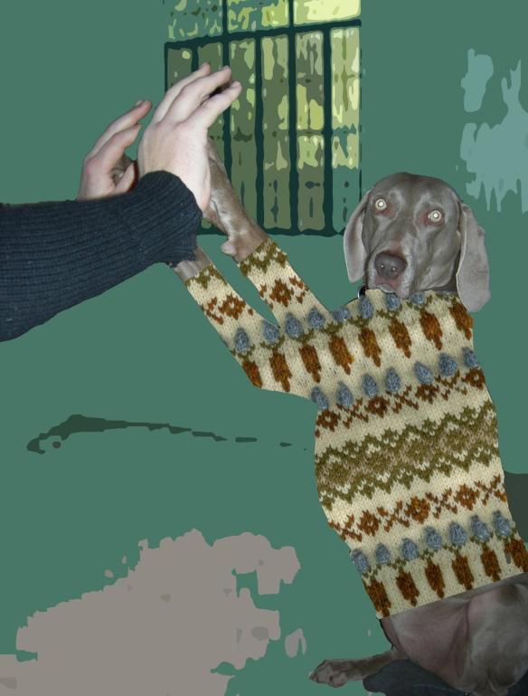 """weimaraner in a fairisle sweater"""